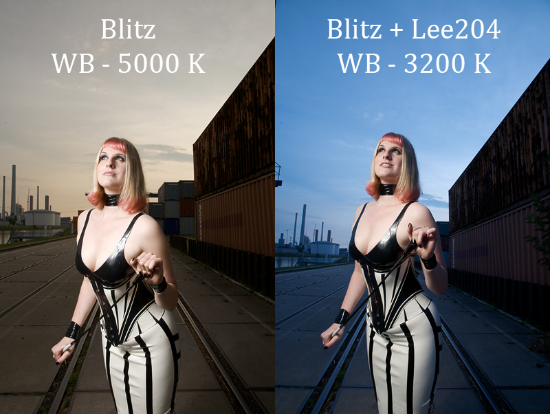 blitz_lee204